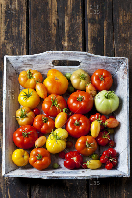 Wooden tray of various sorts of tomatoes