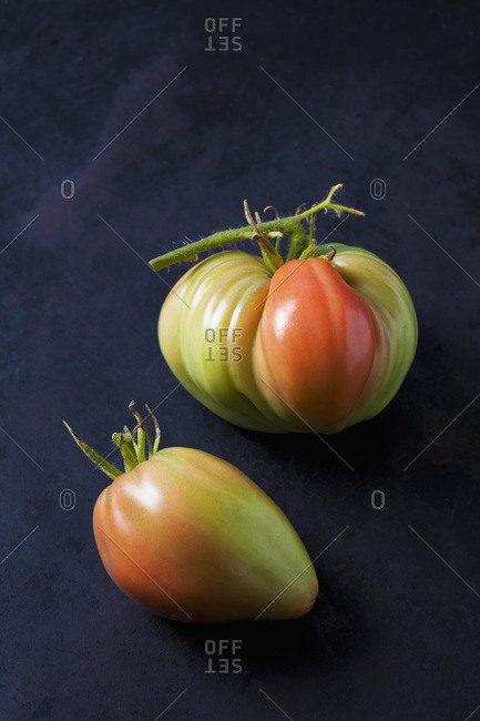 Two Oxheart tomatoes on dark ground