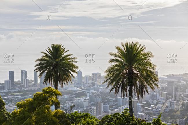 USA- Hawaii - September 24, 2018: Oahu- Puu Ualakaa State Park- View from Tantalus Lookout to Honolulu- Palms