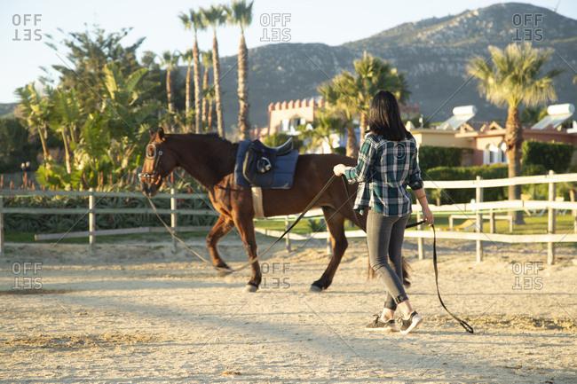 Spain- Tarifa- woman leading horse on riding ring
