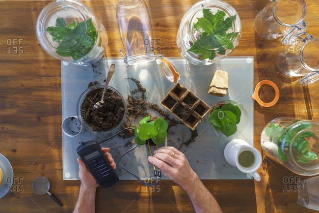Senior man making glass biotopes on table
