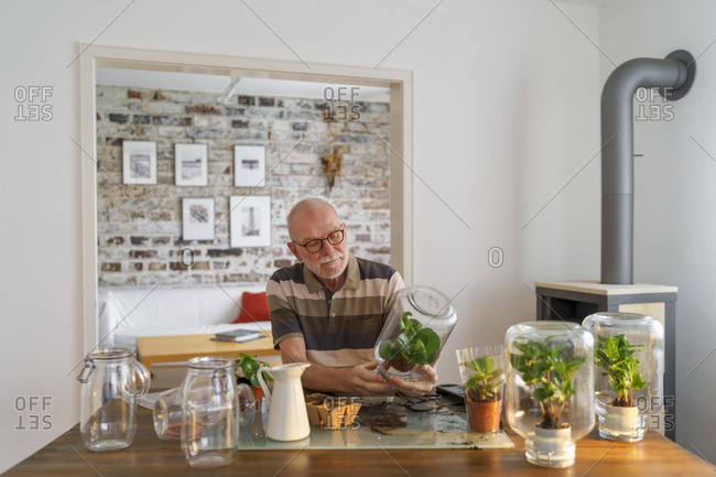 Senior man making glass biotopes at home