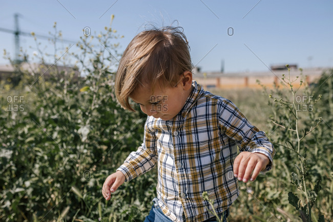 Little blond child is in a field in spring