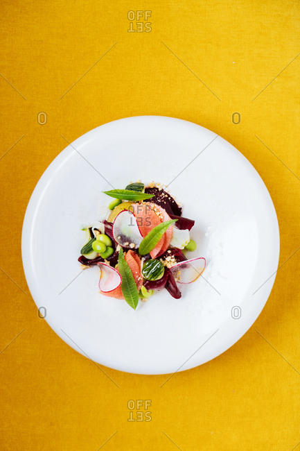 Gourmet vegetarian dish on yellow background