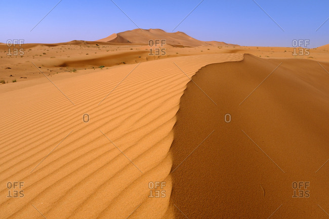 Sand dunes in the deserts of Dubai