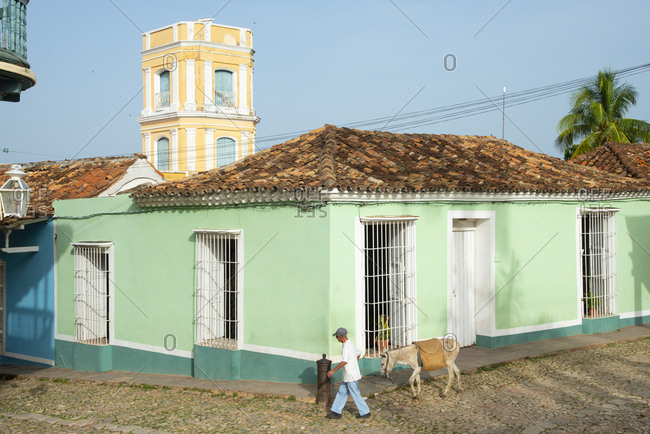 Man walking donkey on the streets of Trinidad, Cuba