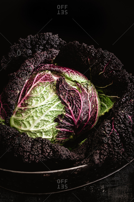 Dark and moody green and purple cabbage