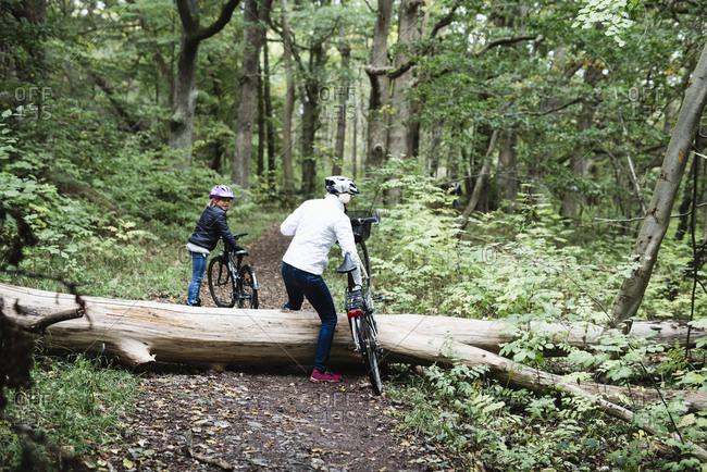 Cyclists walking over fallen tree