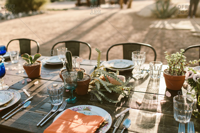 Table setting in the desert with cactus center piece