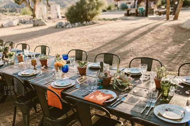 Outdoor modern event table setting in the desert with cactus center piece