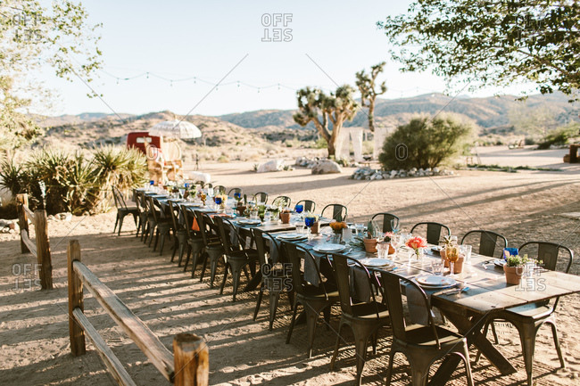 Outdoor wedding table setting in the desert with cactus center piece