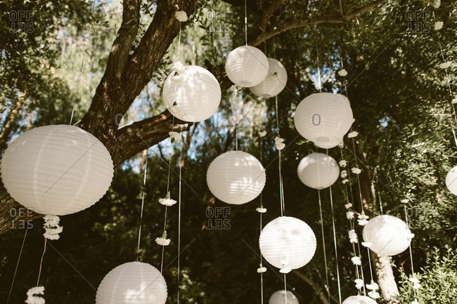 Wedding backdrop with hanging white lanterns and flowers