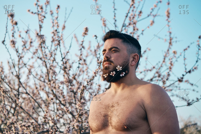 Man with flowers in beard