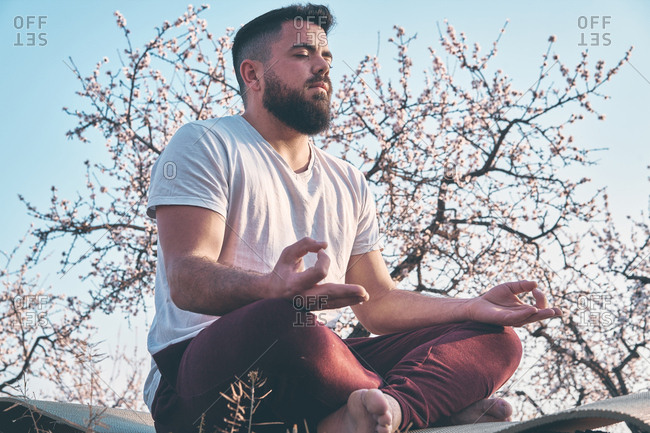 Handsome bearded guy keeping eyes closed and meditating while sitting in lotus pose against blooming tree and cloudless sky on sunny day in amazing spring garden