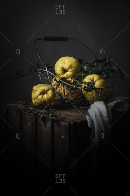 Ripe yellow apple-quinces placed in basket on dark wooden background