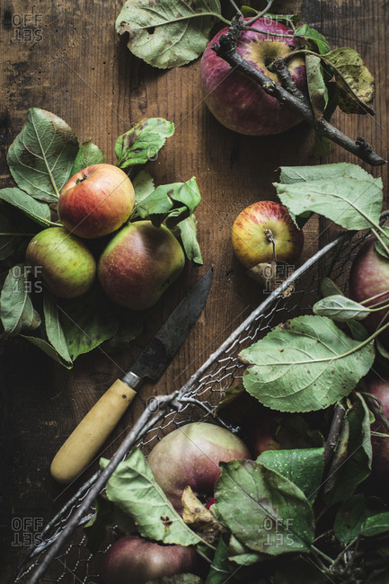 Apples and knife on plate