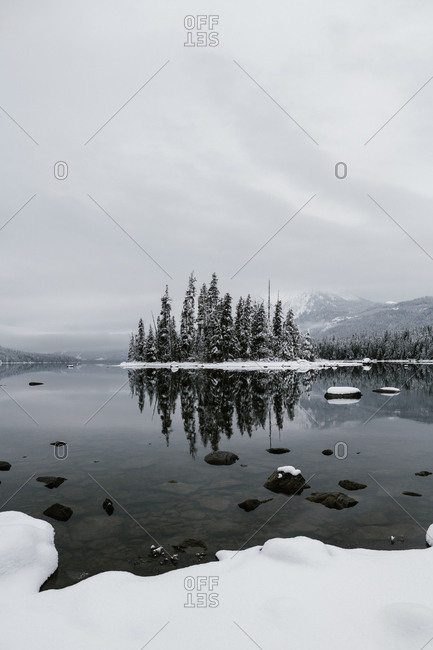 Snowy trees on the edge of mountainside lake