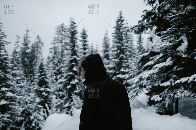 Person walking through snowy forest