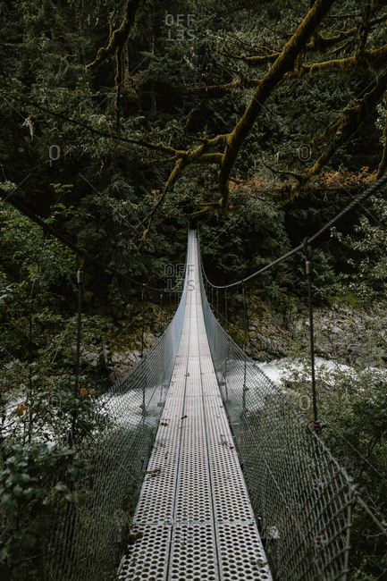 Footbridge leading over river in forest