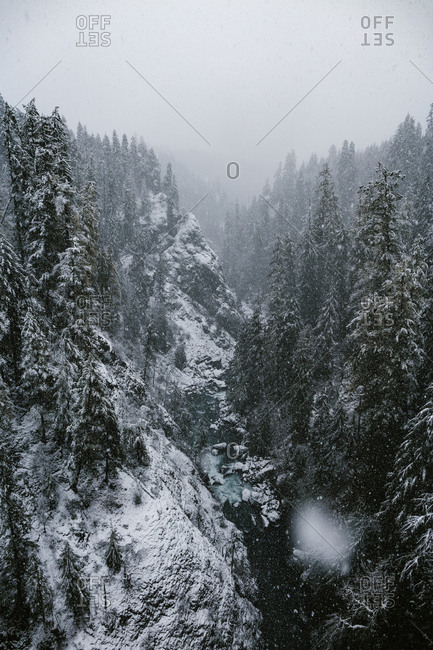 Heavy snowfall over a forest and river