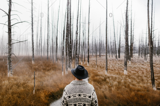Man looking out toward a river in a foggy forest