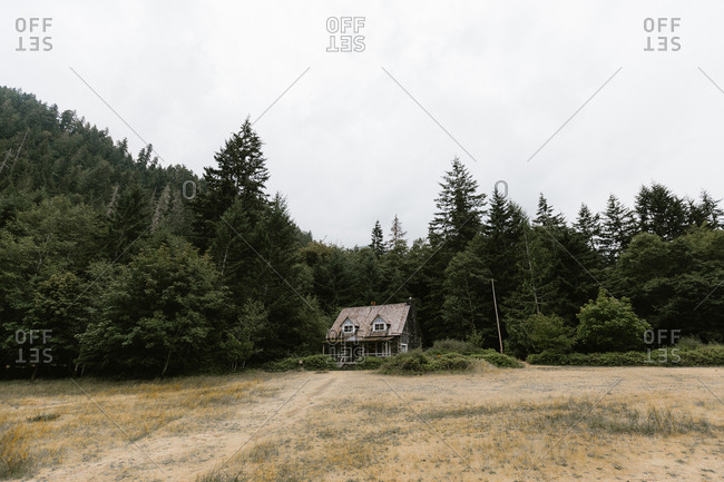 Log cabin on the edge of the woods