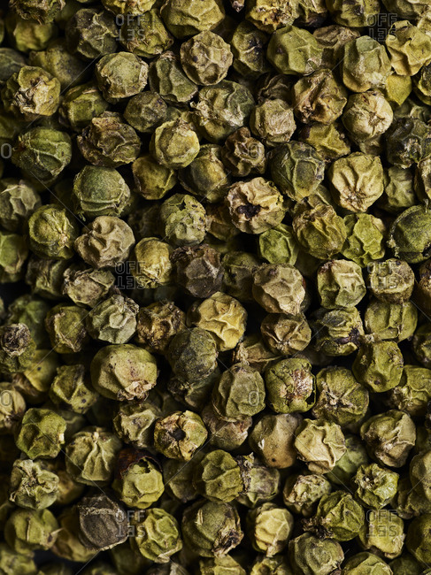 A close-up overhead view of many green peppercorns filling the frame.