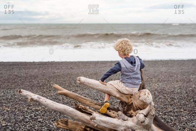 Little boy climbing on driftwood