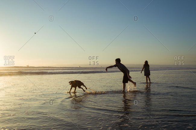 Kids and dog in the ocean at sunset playing fetch