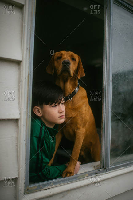 Boy and his dog watching the rain in an open window