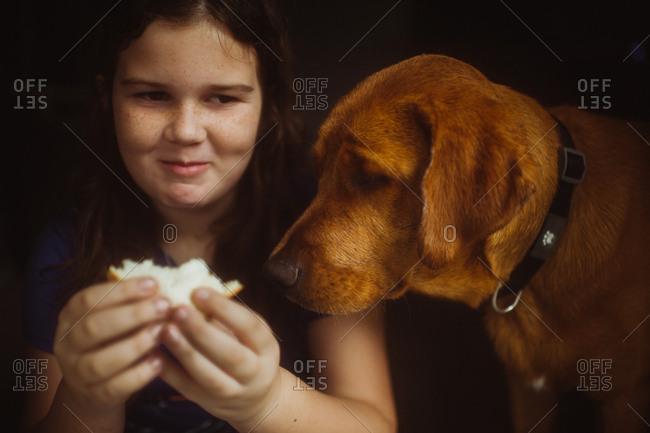 Dog watching girl eat a sandwich
