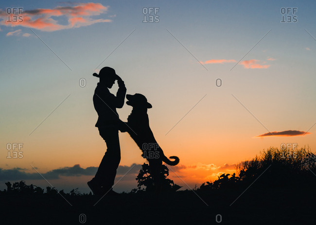 Silhouette of boy and dog dancing in front of the sunset sky