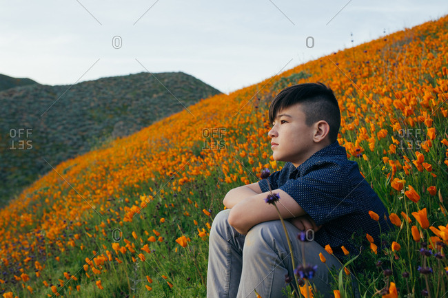 Boy sitting on hillside during California Super Bloom