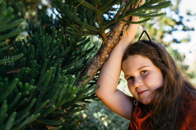 Girl leaning on a fir tree branch