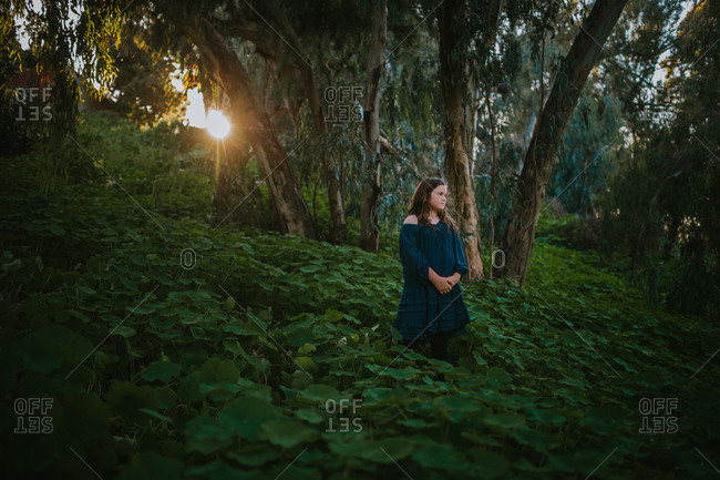 Little girl standing in a field covered in green plants at sunset