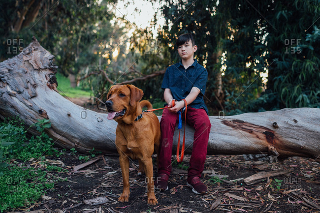 Boy resting on fallen tree while walking dog