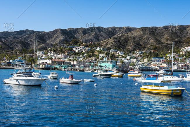 November 12, 2015: USA- California- Channel islands- Santa Catalina Island- Bay of Avalon-