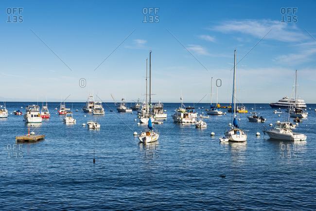 November 13, 2015: USA- California- Channel islands- Santa Catalina Island- Bay of Avalon
