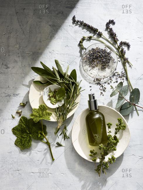 Lavender, eucalyptus, and sage essential oils setting.