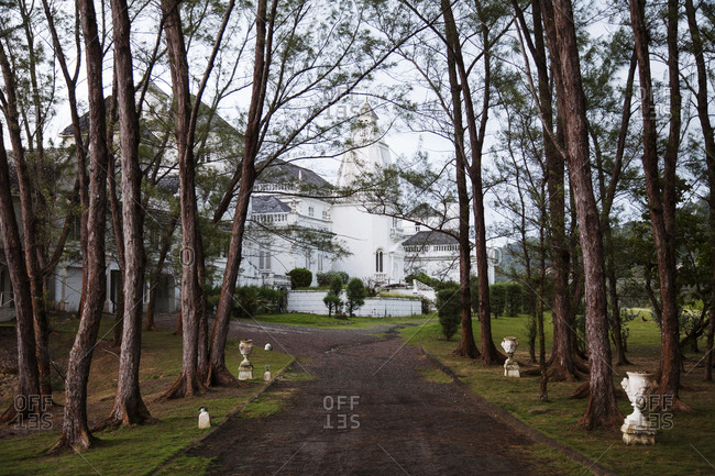 January 31, 2012: JAMAICA, Port Antonio. The driveway towards the Trident Castle.