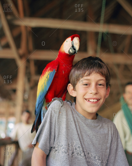 October 5, 2010: PERU, Amazon Rainforest, South America, Latin America, portrait of a Asa with Macaw bird sitting on his shoulder at the Tambopata Research Center.