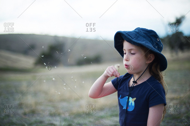 Girl picks flower and blows petals into wind making a wish