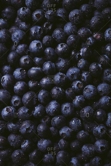 Still life of fresh blueberries