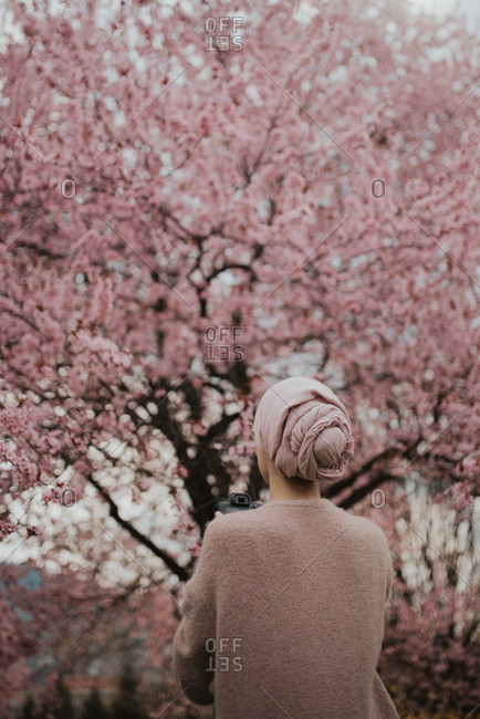 Woman takes a photo of cherry blossoms on her camera