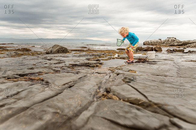 Young boy exploring a tidal pool by the bay