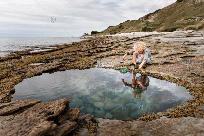Young boy trawling a tide pool for treasure