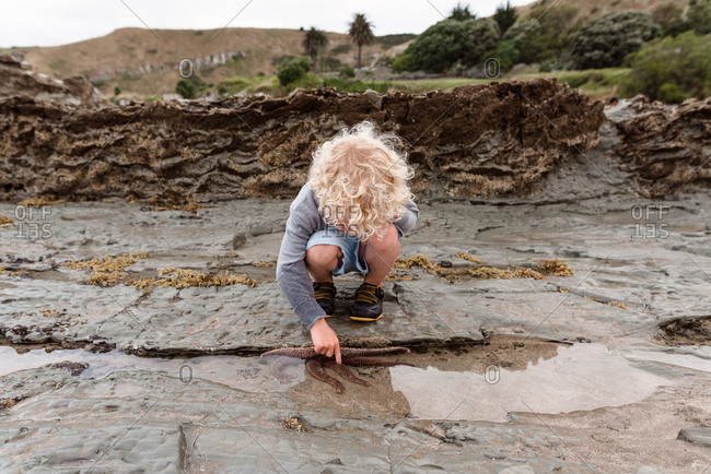Cute young boy exploring a tide pool