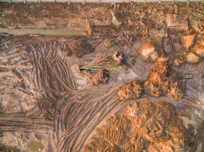 Aerial view of dry tree falls down over raw soil landscape, Netherlands.