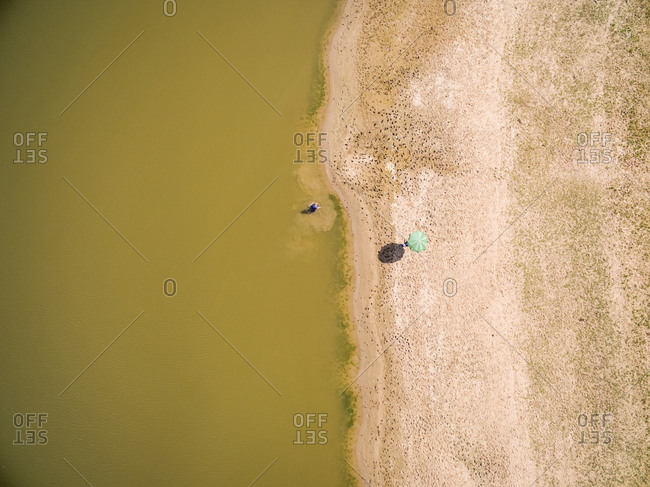 Aerial view above of green parasol and people swimming in calm lake, Netherlands.