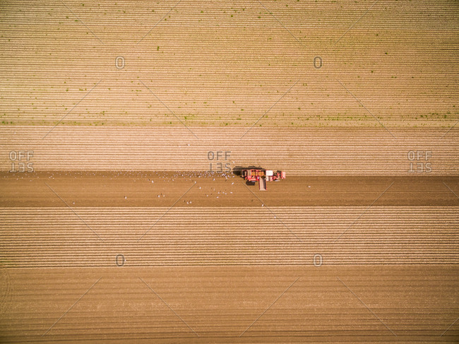 Aerial view of machinery seeding field for agriculture, Netherlands.